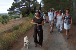 Vineyard walk in the Minervois